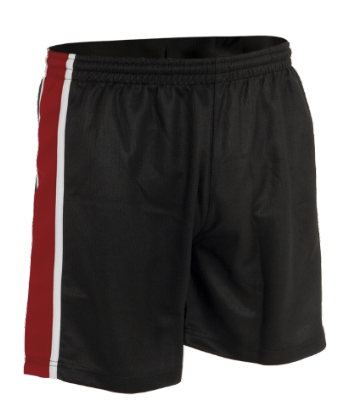 Boys Little Heath Panelled Sport Shorts